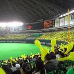 福岡のヤフードームで野球のチケットもぎり、手荷物検査、案内のアルバイト体験談