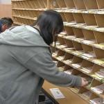 【地名が覚えられる】日本郵政『立川郵便局』で郵便物仕分けのバイトをした体験談【大学生】